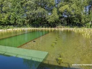 Staw kąpielowy w okolicy Wrocławia