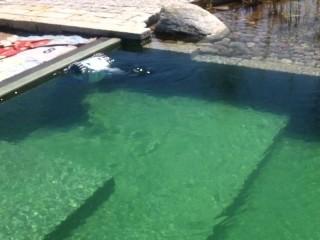 robot podwodny w stawie kąpielowym przy pracy