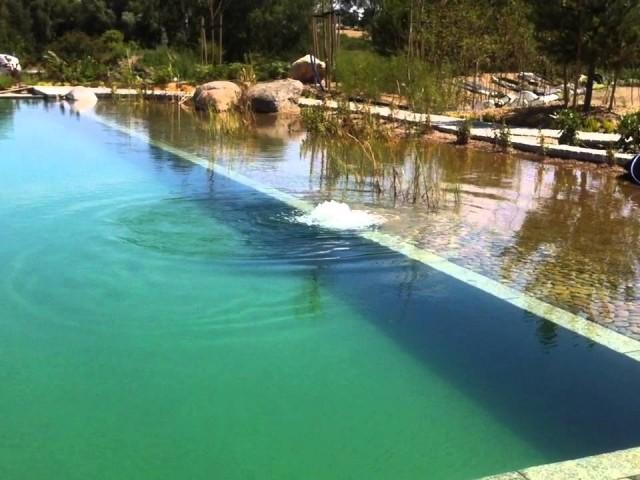 staw kąpielowy z robotem podwodnym, pływalnia w kolorze zielonej oliwki